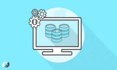 Introduction to Database SRU003